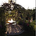 Windows-Live-Writer/jardin_6BD4/DSCF3629_thumb