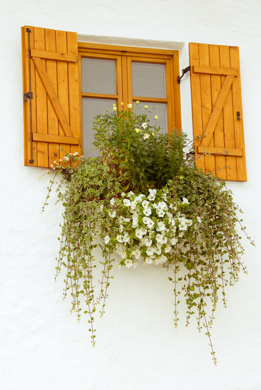 jardin dans la decobelge (255)