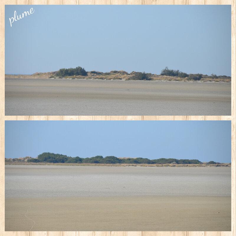 20 plage
