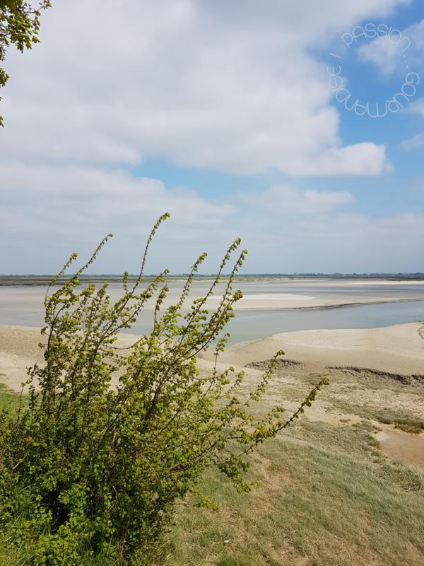 Baie de Somme, quai digue nord_3