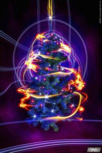 Sapin Dec2012 - 11