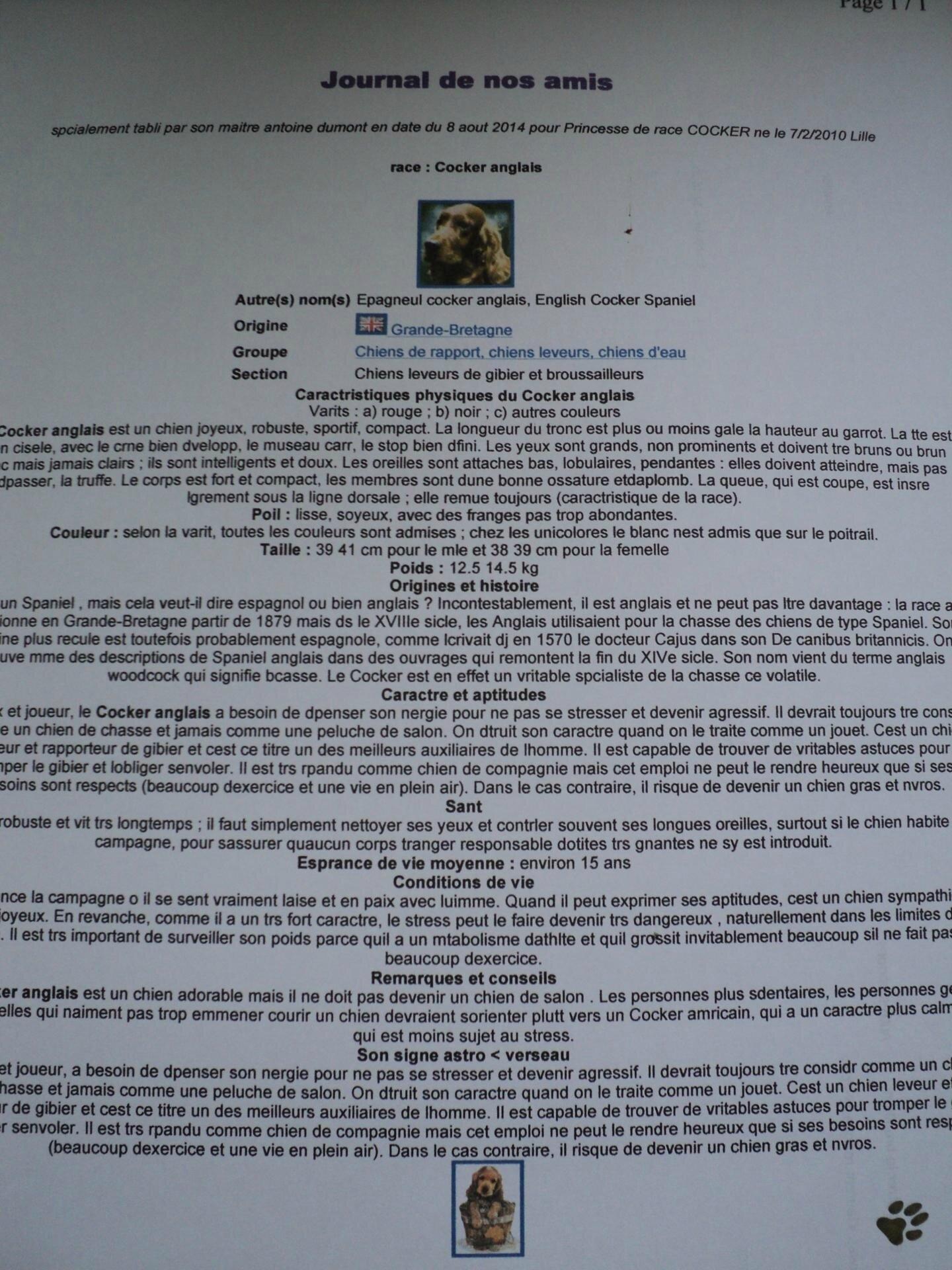 Journal de votre animal chien/chat ou autre