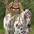 9df722f7f6d4455e8ada7bff5d7b50a9--appaloosa-horses-indian-horses