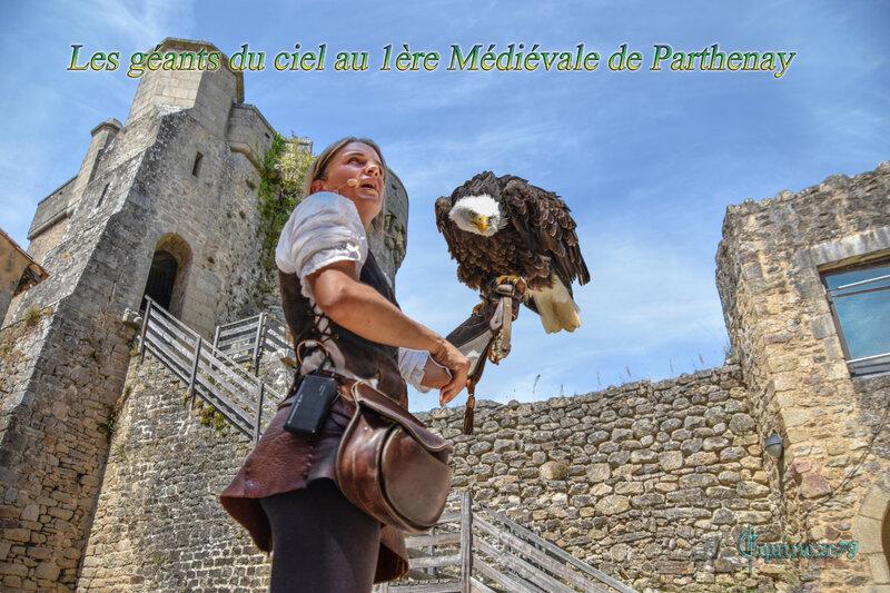 Les géants du ciel au 1ère Médiévale de Parthenay