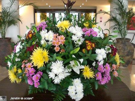 8907_Bouquet_de_l_h_tel