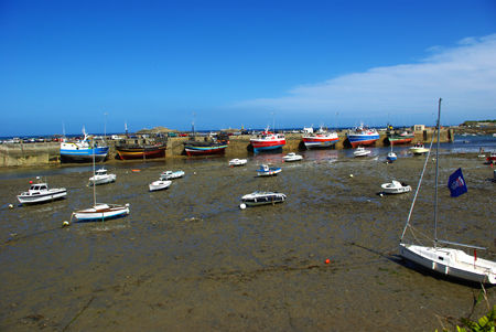 le port de Roscoff