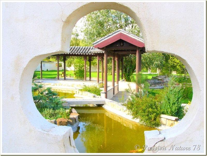 Le jardin Yili (14)