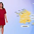 taniayoung07.2019_08_14_meteo20hFRANCE2
