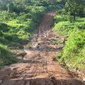 Qualité déplorable de la piste entre côte d'ivoire et Guinée
