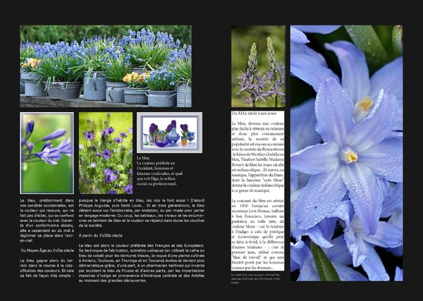 GardenColours1_Page_03