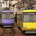 306 yellow & 307 purple