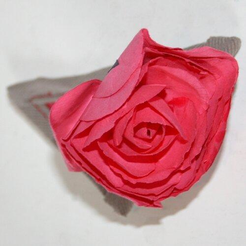 Buis - Rose et marron glacé
