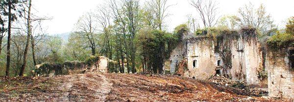 Grassac Chateau d'horte avril 08 (3)