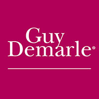 guy-demarle-grand-public-logo-1428657019