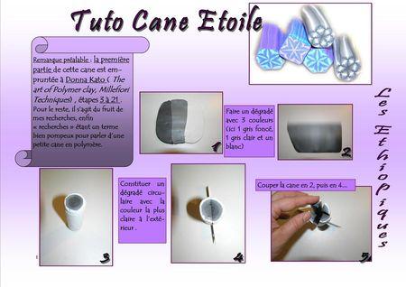 Tuto_cane_etoile_01