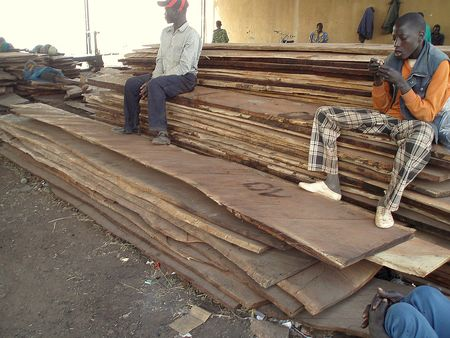 Stock de planches Chantier Naval MOPTI Mali
