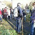 Promenades guides - 2014-11-08 - PB086987