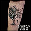 Un arbre, une balançoire, une silhouette et une