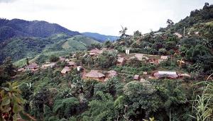 village Mae salong