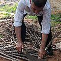 M1 prépartion du manioc