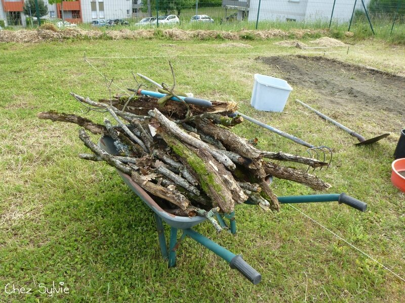 Potager permaculture 04