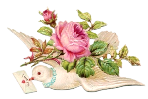cajoline_vintageflowers2_7