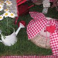 table picnic 054