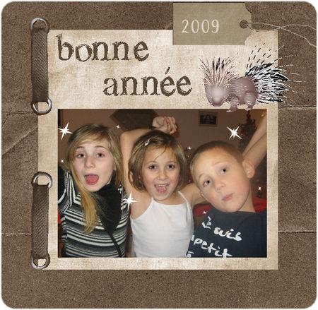 bonne_ann_e_2009_tri