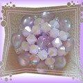 ok argentica violet rose ala2X