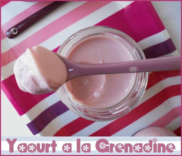 yaourt au sirop de grenadine 1
