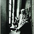 Denise colomb (1902-2004), picasso dans son atelier avec les chouettes, 1952