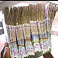 Multiplication d'argent rapide