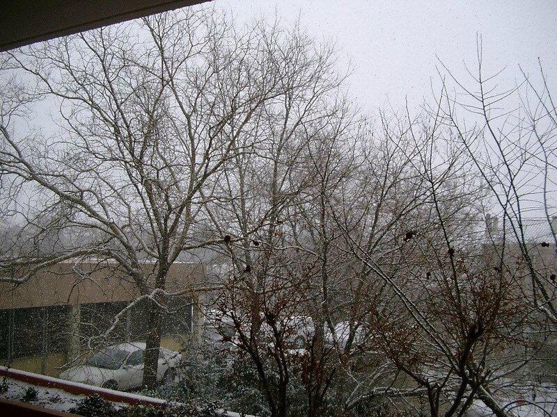 Josiane neige 28 fevrier 2005 (1)