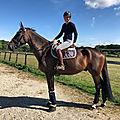 Décès d'une cavalière au haras-du-pin: la normandie du cheval est en deuil...