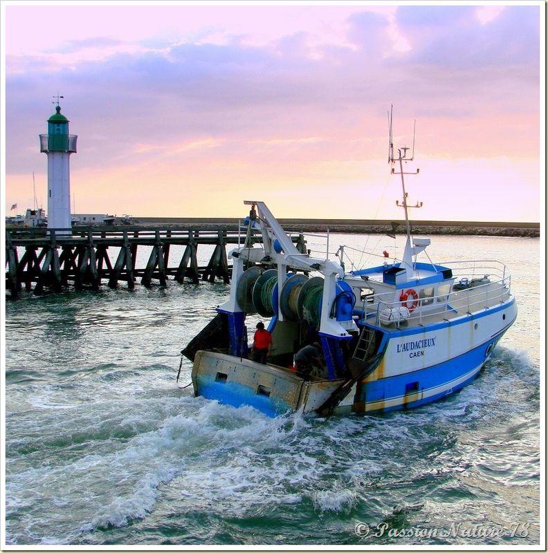 Retour de pêche (1)