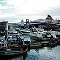 46 Le port de pêche