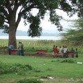 140 - Awassa : Le marché aux poissons