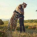 tigre0256886554_1942430386_n