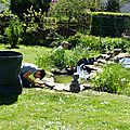 496 - au jardin de grande fille