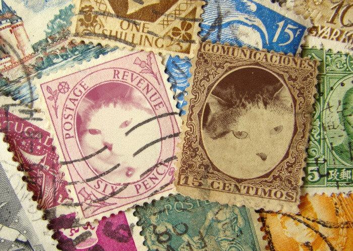 Paloma sur les timbres