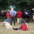 équitation d'extérieur - parcours en terrain varié (225)