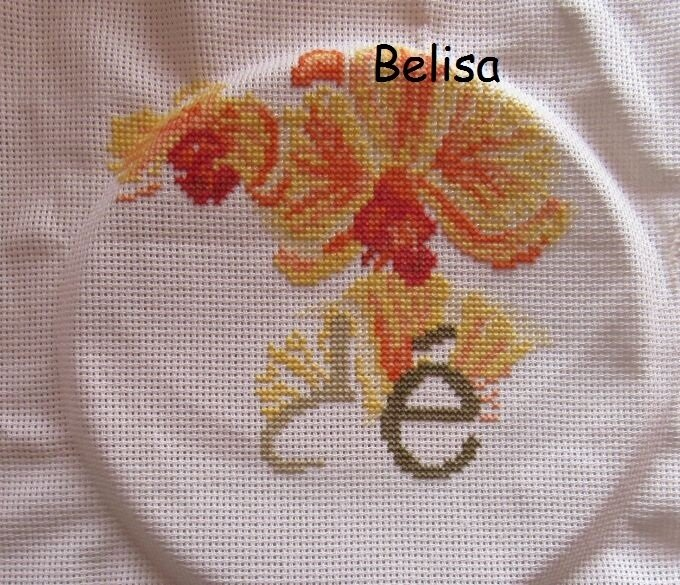 belisa 5