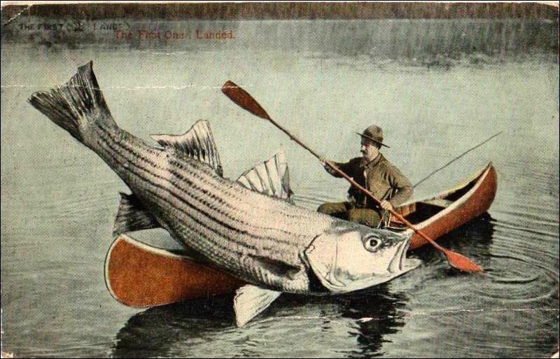 Canoë pêcheur et gros poisson
