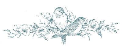 BirdsBranchesDrawingVintageGraphicsFairyblu