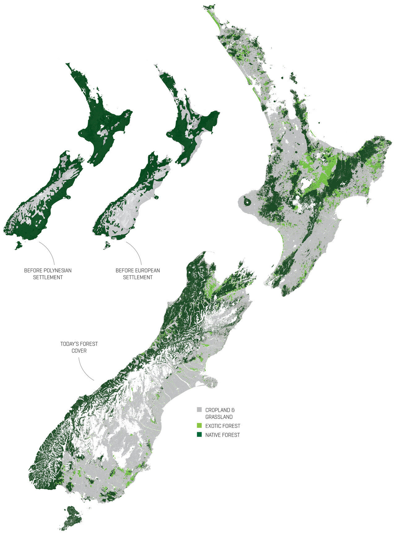 Deforestation in New Zealand