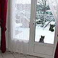 Hinedie et la neige