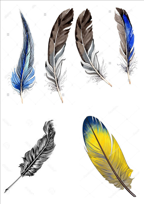 plumes 2