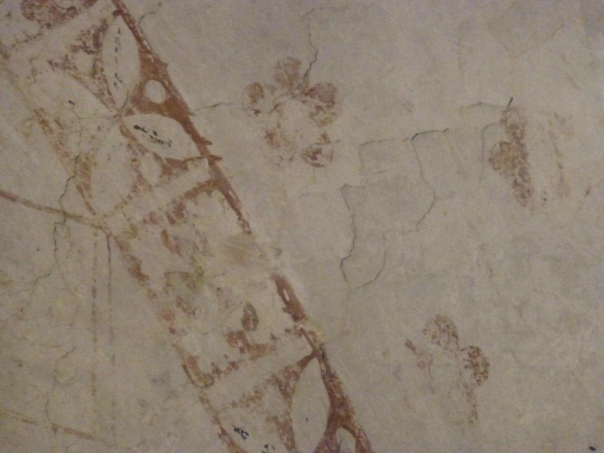 balade à cheval médiévale - Abbaye de Hambye (181)