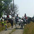 Jeux équestres manchots 2013 (74)
