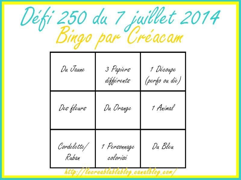 défi 250